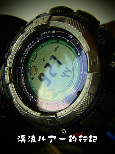 P3010015.jpg