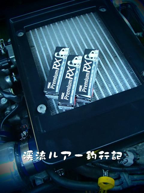 PC170012.jpg