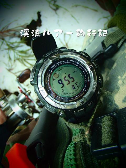 P3120050.jpg