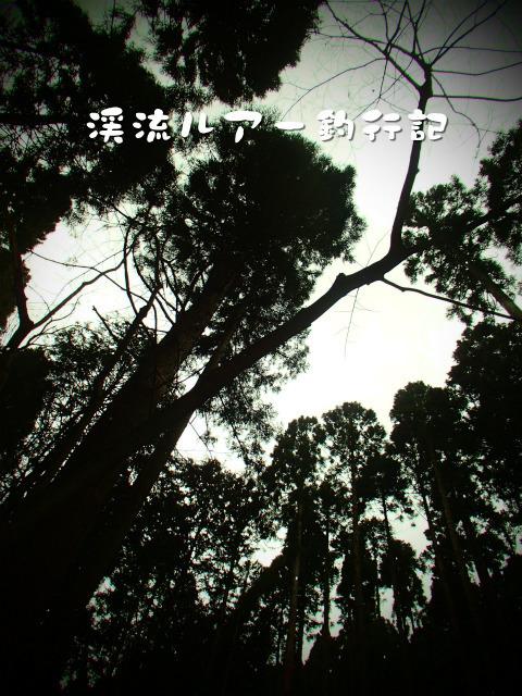 P3240011.jpg