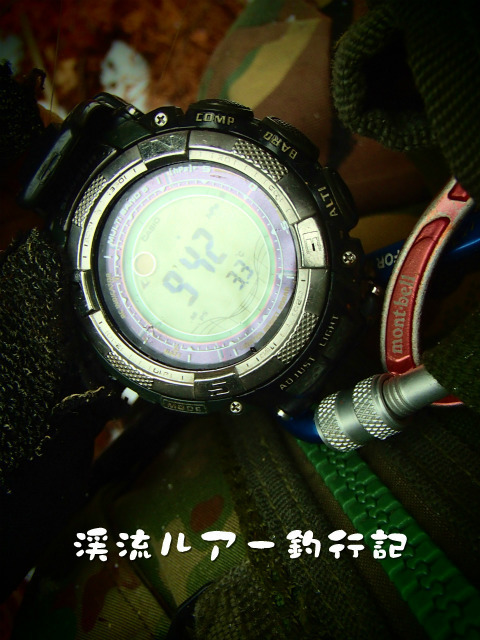 P4030018.jpg