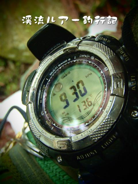 P4070065.jpg