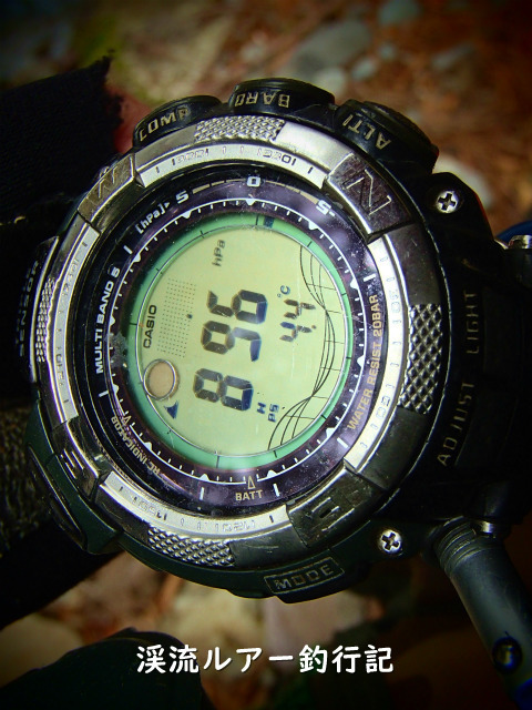 P4220016 (2).jpg