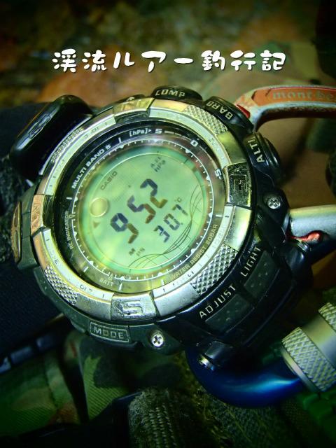 P8040006.jpg