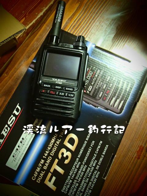 P8170010.jpg