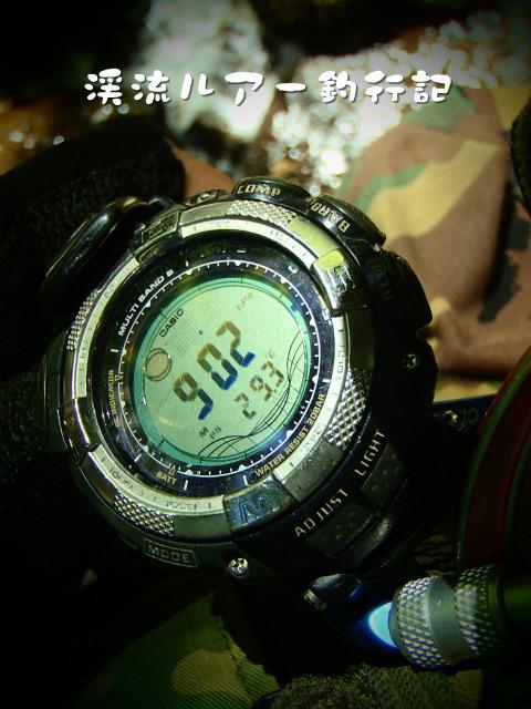 P9080050.jpg