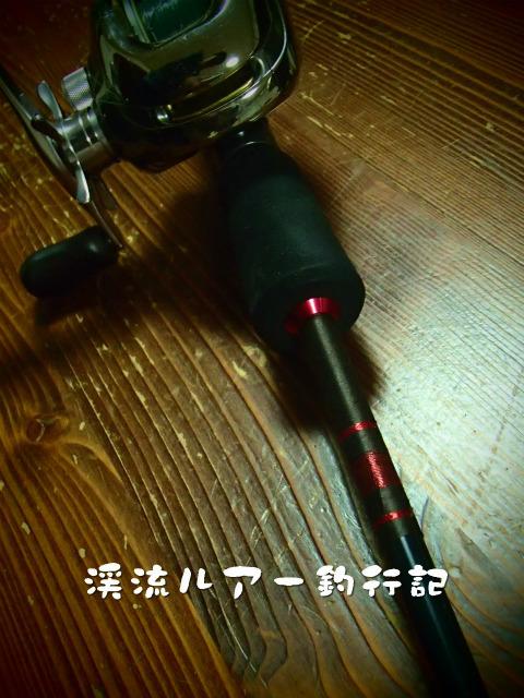 PC310045.jpg